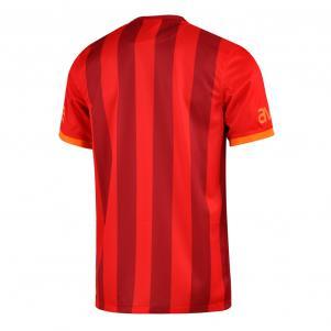 Nike Shirt Drittel Galatasaray   13/14