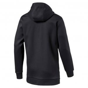 Puma Sweatshirt Evo Fullzip Hoody