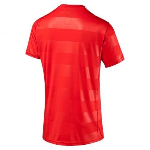 Puma Maillot De Match  Switzerland   16/18 puma red-white Tifoshop