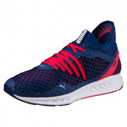 Puma Chaussures Ignite Netfit Blue
