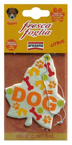 Fresca foglia dog citrus