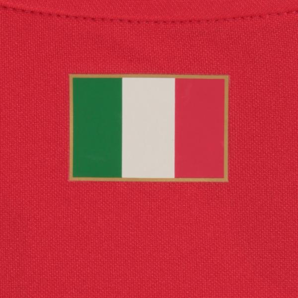 Figc Italia Goalkeeper Shirt Replica Ss POINSETTIA FIGC Store