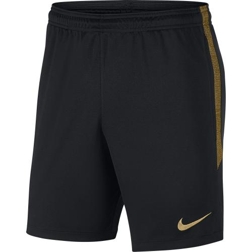 Nike Short Pants Training Inter   19/20