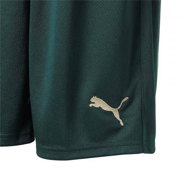 Puma Pantaloncini Gara Terza Italia   20/22 Verde Tifoshop