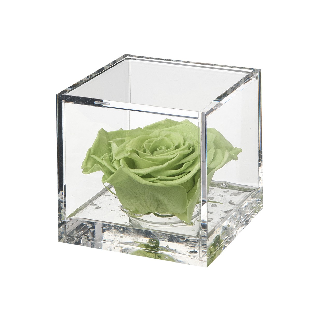 Flowercube Rosa Verde 10x10