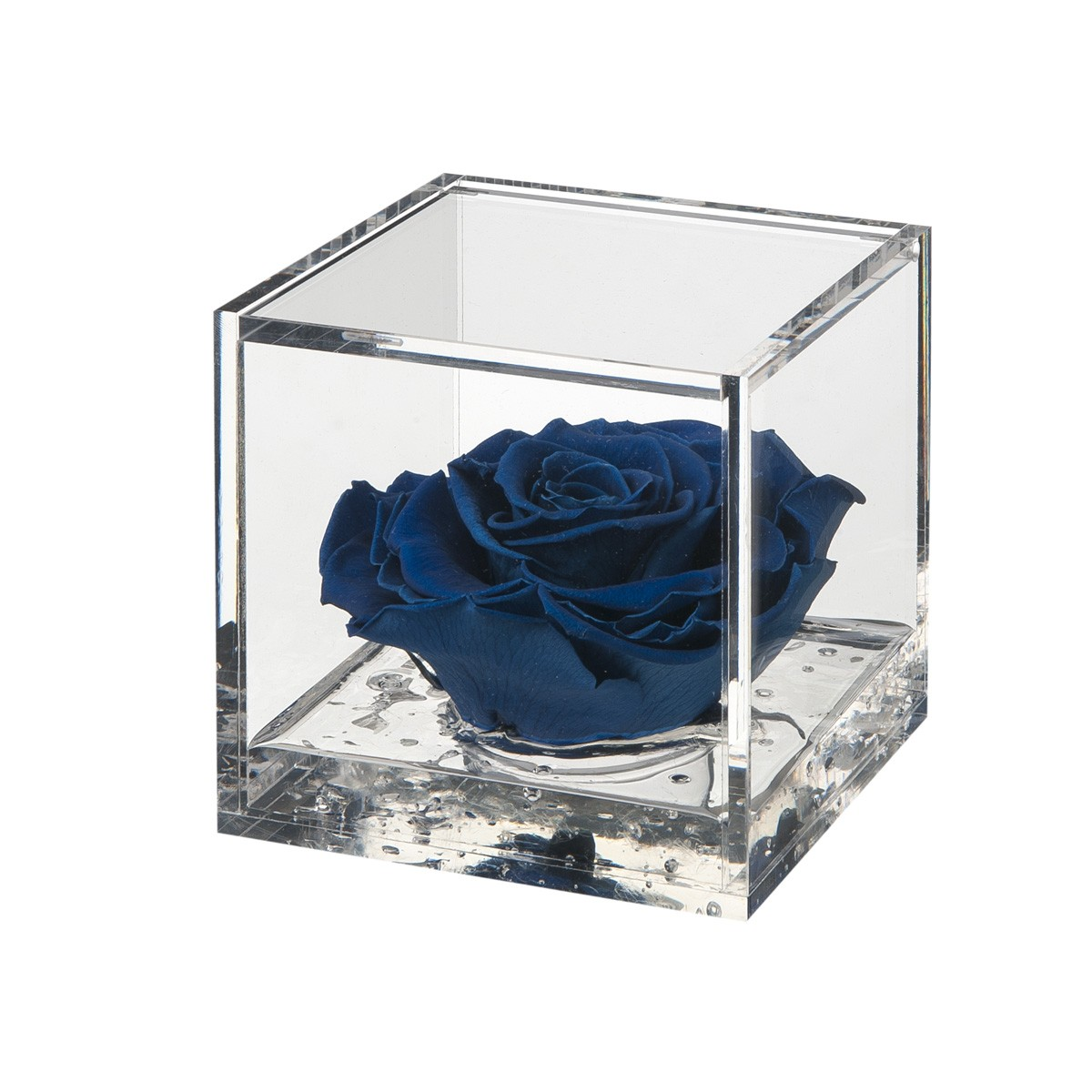 Flowercube Rosa Blu 10x10
