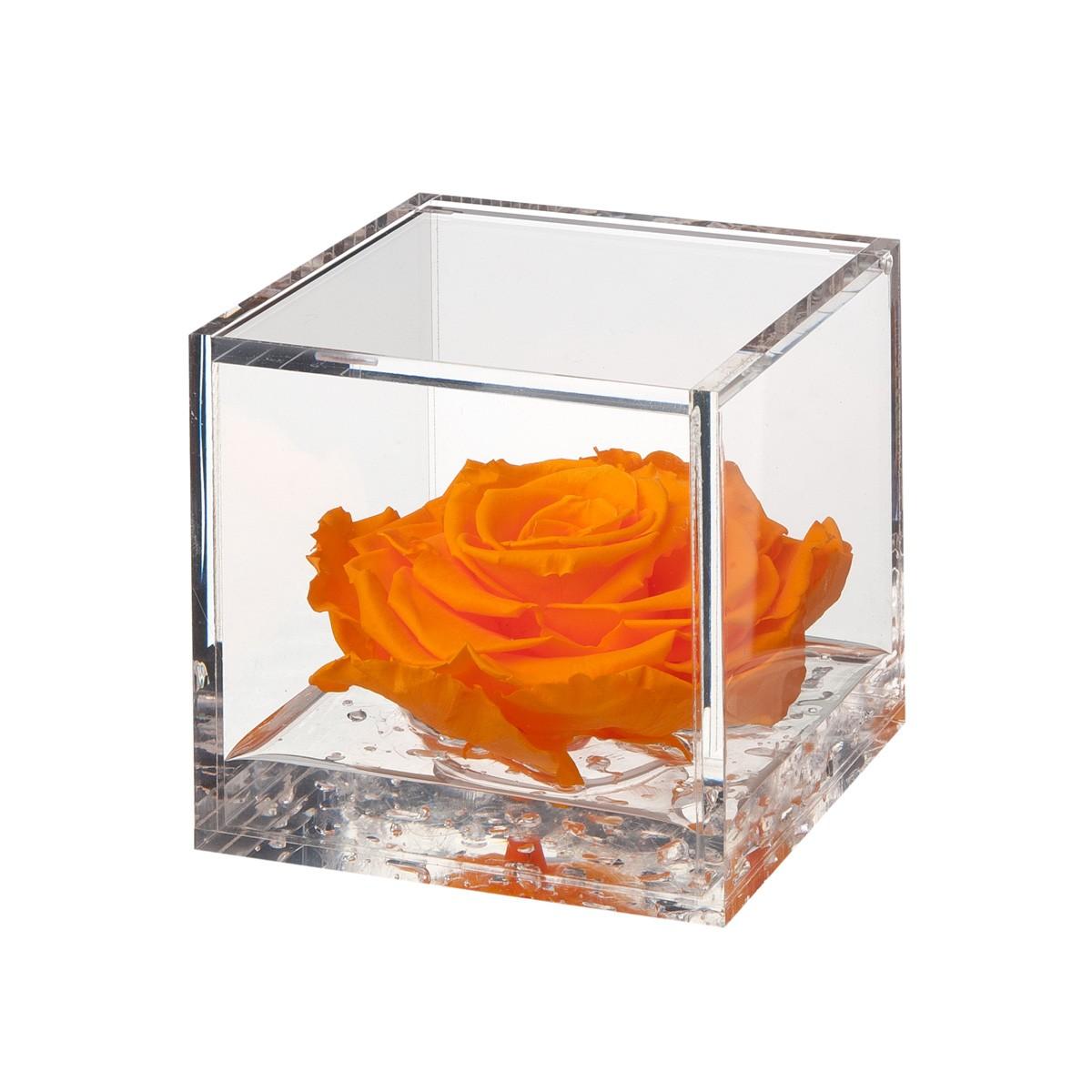 Flowercube Rosa Arancio 10x10
