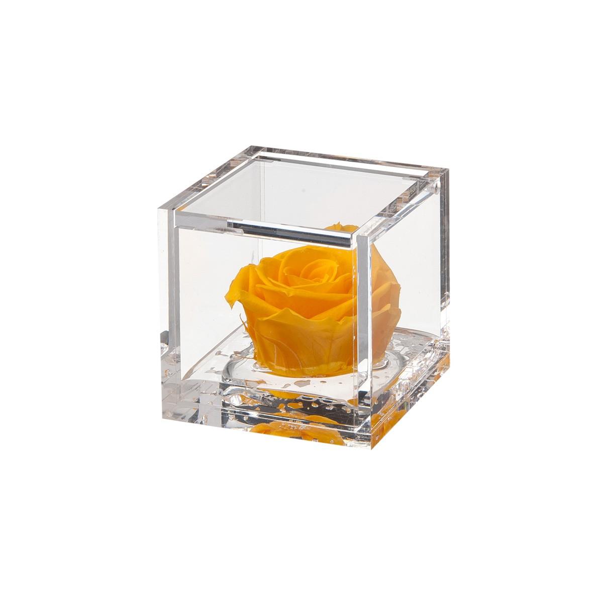 Flowercube Rosa Gialla 6x6