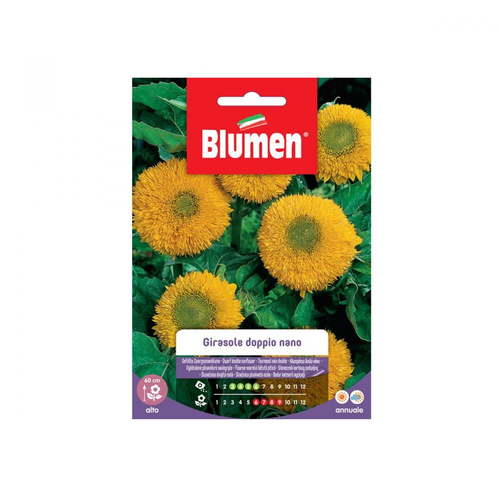 Semi Per Pianta Annuale Di Girasole, Indicata Per Creare Macchie Di Colore In Giardino O Sul Balcone, E Come Fiore Da Recidere.
