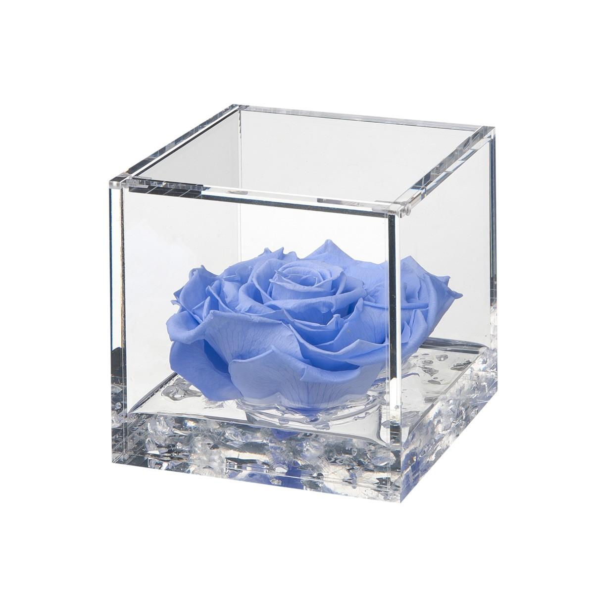 Flowercube Rosa Azzurra 10x10