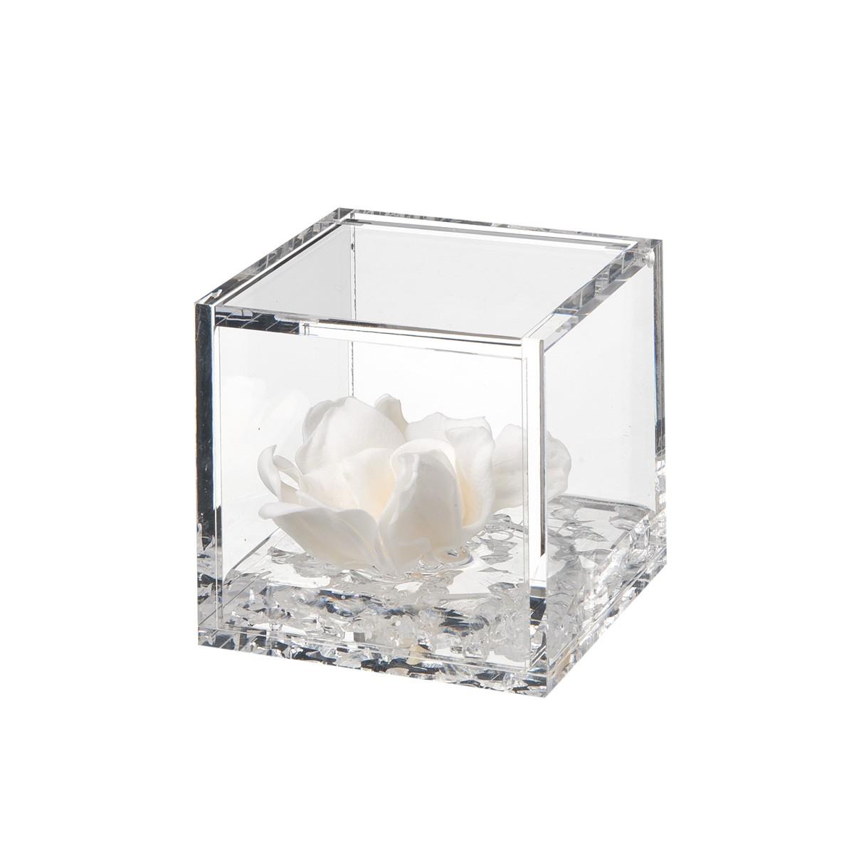 Flowercube Gardenia Bianca 8x8