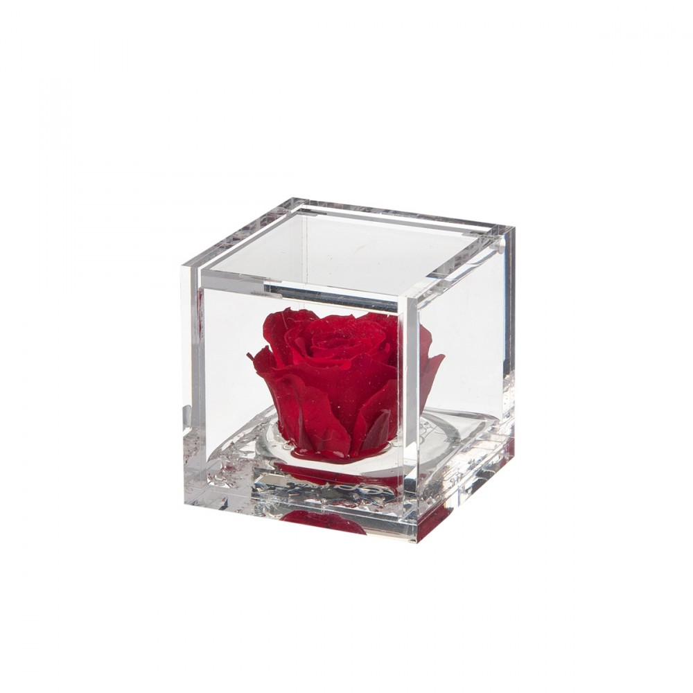 Flowercube è Una Fantastica Idea Regalo. La Rosa Cherie Ha Un Diametro Minore Delle Altre Rose, è Snella Ed Elegante. Il Cubo In Plexiglass Effetto Vetro, Apribile, Contiene Una Rosa Stabilizzata Di Alta Qualità Di Colore Sfumato Dal Rosa Cipria Al Rosa Intenso, Profumata, Su Un Gel Effetto Acqua.
