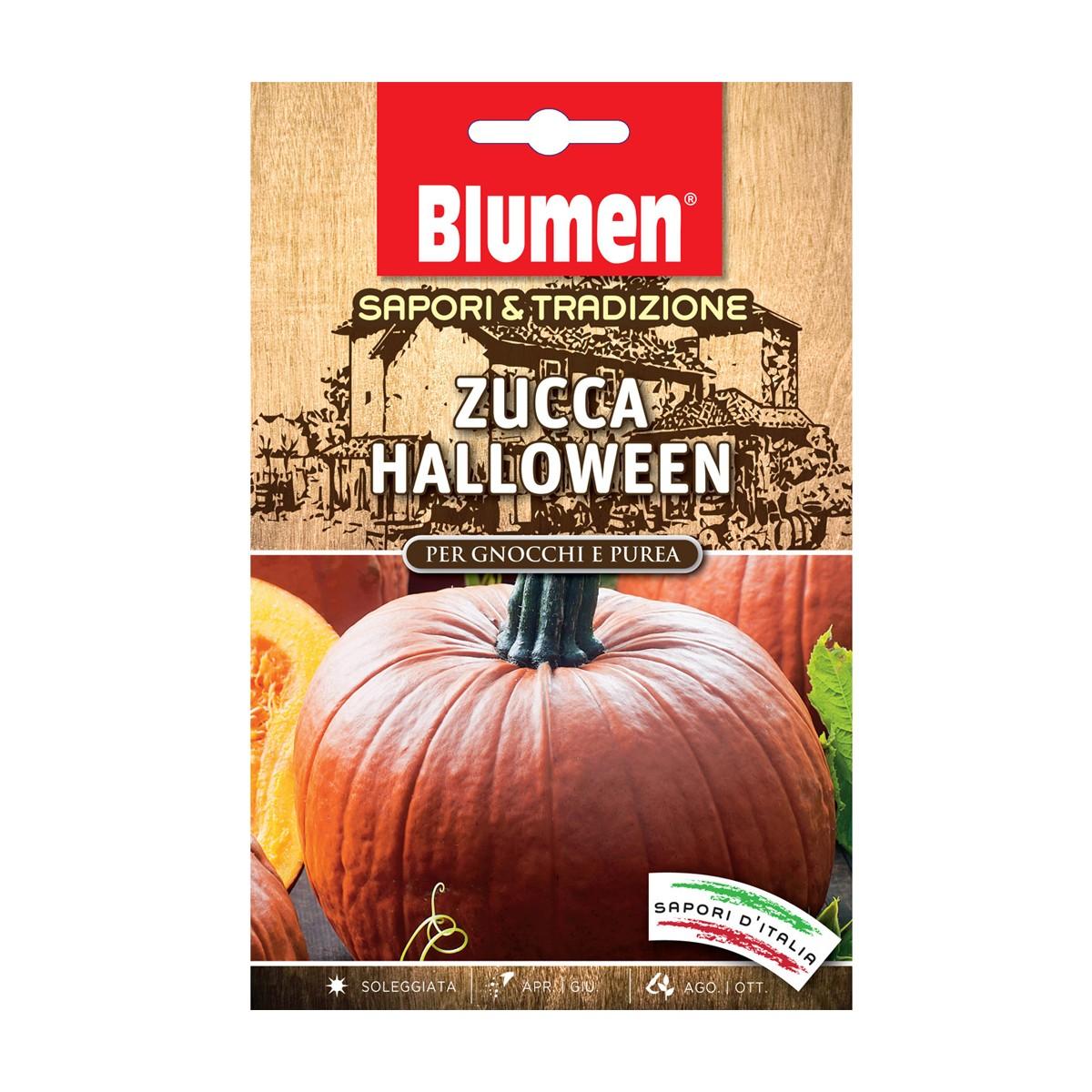 Semi Zucca Halloween