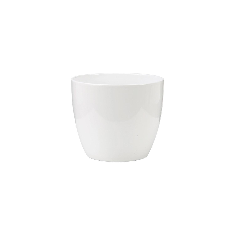 Mini Vaso Alaska
