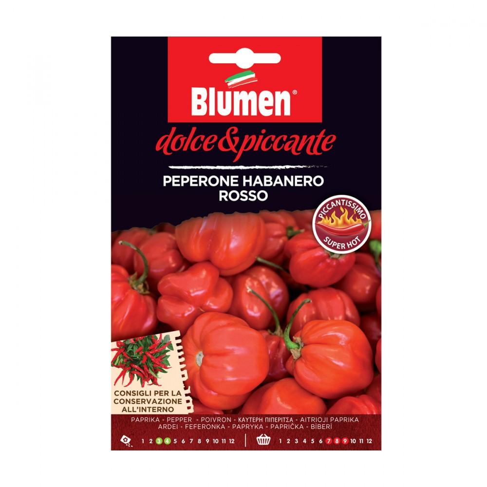 Semi Della Varietà Di Peperoncino Habanero Rosso. La Pianta Che Producono è Molto Resistente. I Suoi Frutti A Forma Di Lanterna Sono Lunghi 2-8 Cm. E' Un Peperone Molto Piccante.