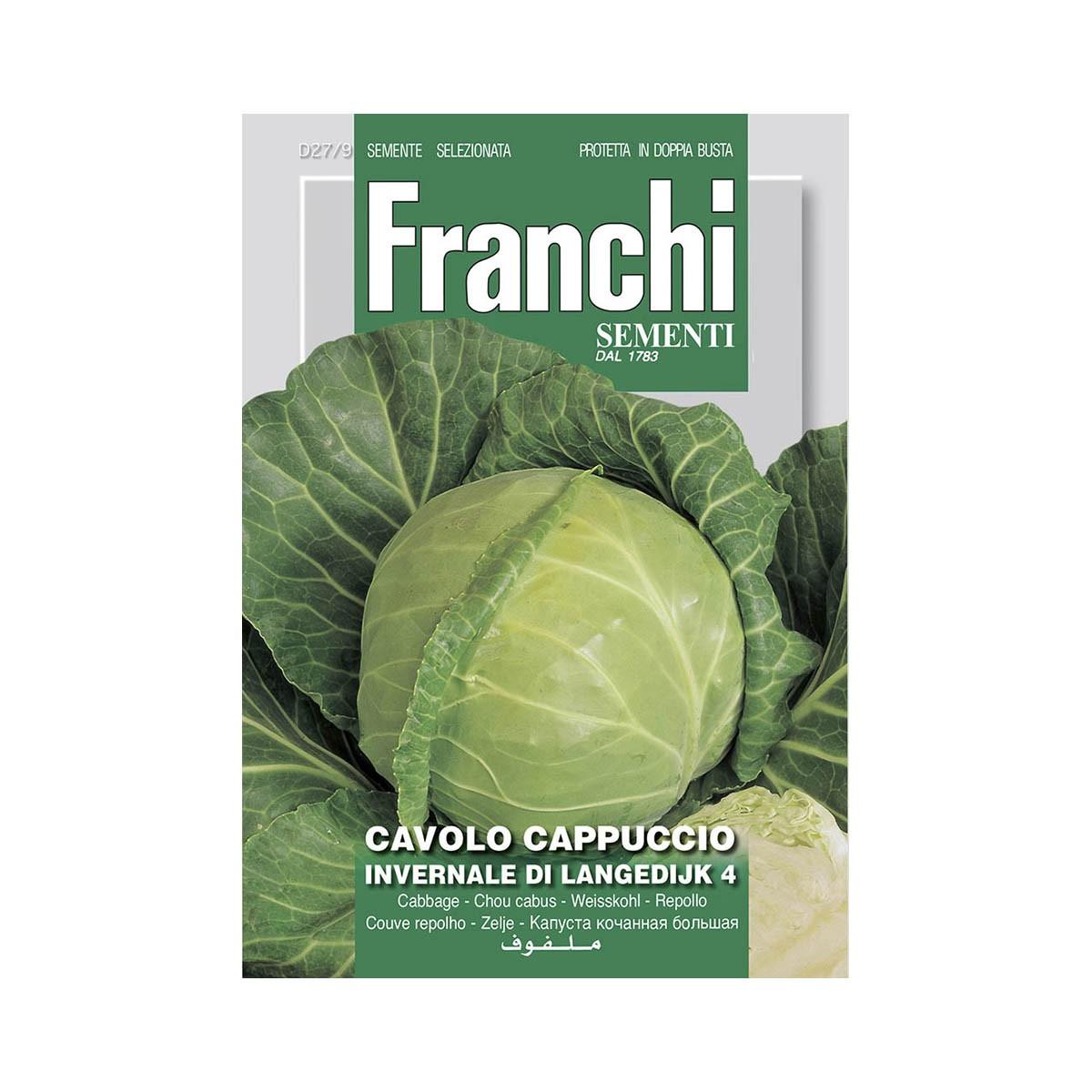 Semi Cavolo Cappuccio Bianco Langedijk 4