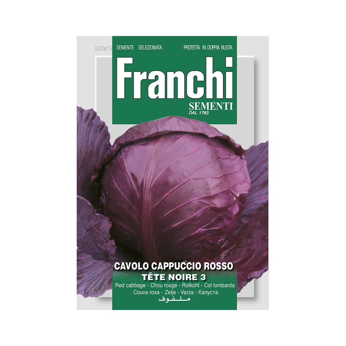 Semi Cavolo Cappuccio Rosso - Cabeza Negra 3 (tete Noir)