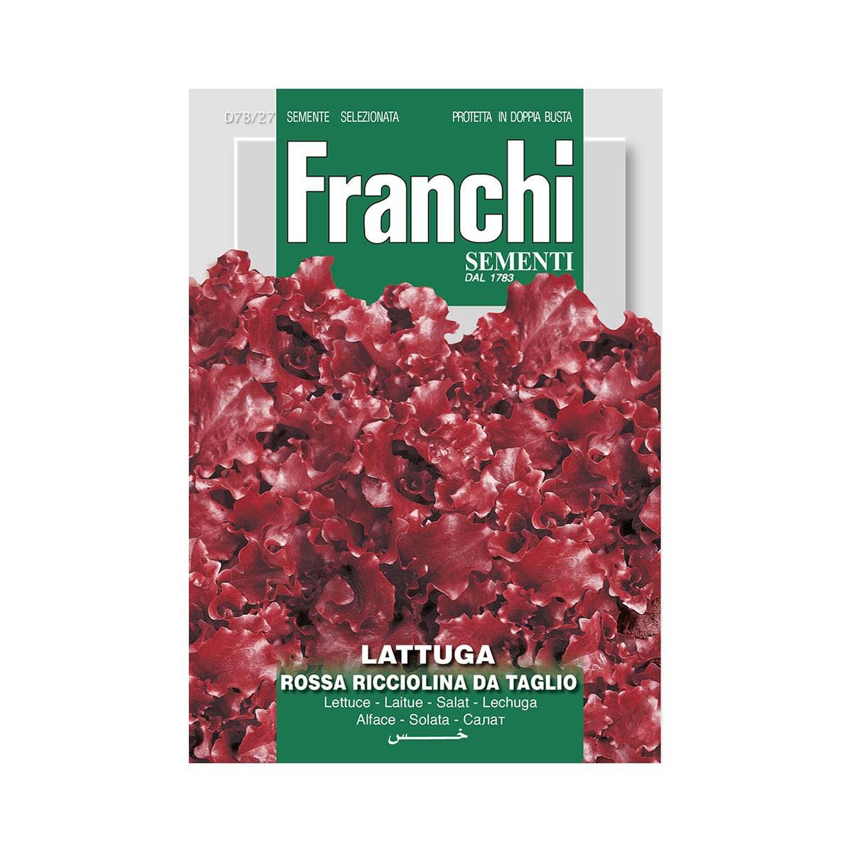 Semi Lattuga Rossa Ricciolina Da Taglio