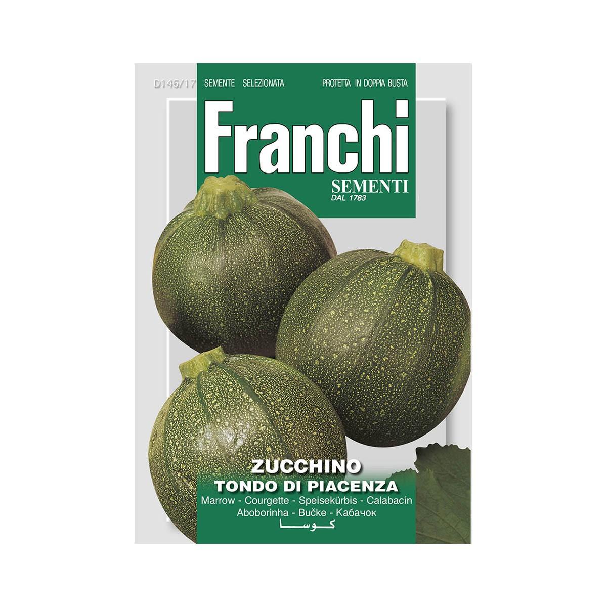 Semi Zucchino Tondo Di Piacenza