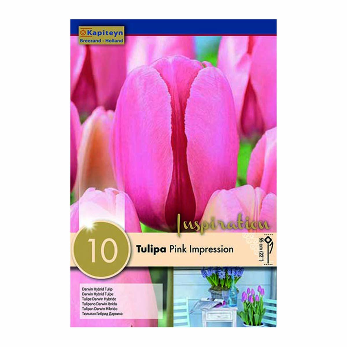 Bulbi Di Tulipani Pink Impression