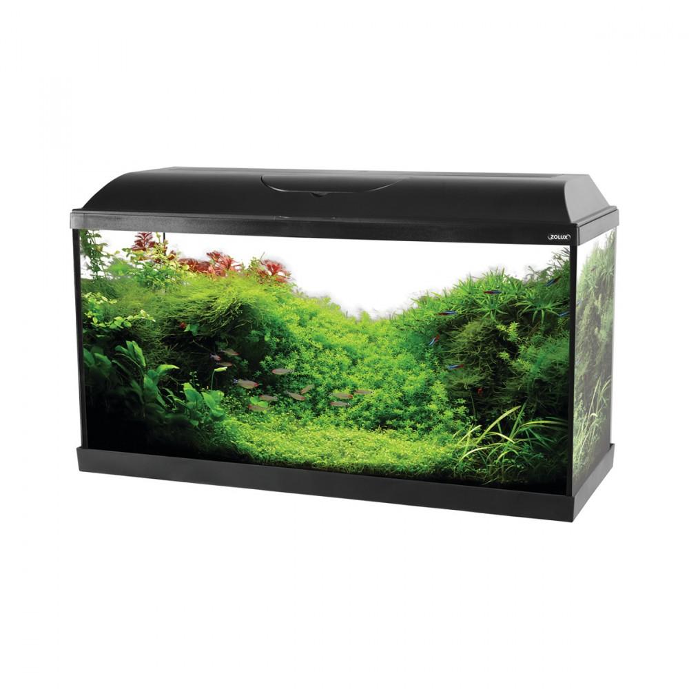 Acquario Modello Iseo Da 80 Litri. Completamente Accessioriato, Dispone Di Filtro Biologico, Pompa Da 450 Litri All'ora, Illuminazione A Led Da 8w E Riscaldatore Da 100w.