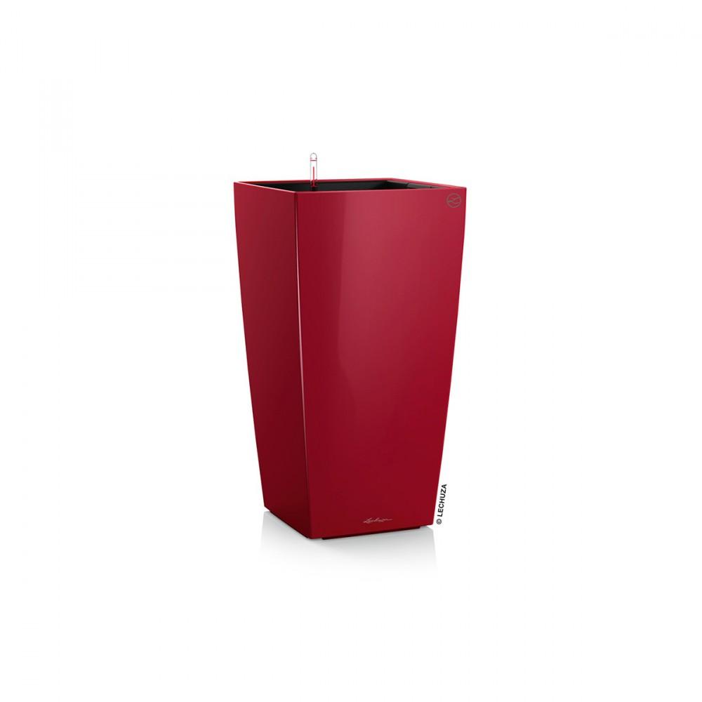 Il Vaso Da Pavimento Cubico Premium Di Lechuza, In Un Elegante Rosso Scarlatto, è La Soluzione Perfetta Per Arredare La Tua Casa Con Un Tocco Di Colore E Di Classe. Ideale Per Interni Si Adatta Molto Bene Anche All'esterno, In Terrazzo, Sul Balcone O In Veranda. Finiture Eleganti, Ampia Gamma Di Colorazioni, Design Minimale, Grande Praticità: Questi Sono I Suoi Punti Di Forza! La Linea Di Vasi Per Piante Cubico Premium Di Lechuza è Dotata Di Un Sistema Di Riserva D'acqua E Auto-irrigazione Che Garantisce Alle Piante Tutta L'acqua Di Cui Necessitano, Per Diversi Giorni. Il Pratico Indicatore Visivo Permette Di Controllare Il Livello Della Riserva D'acqua Disponibile: Questo Significa Poter Innaffiare Abbondantemente Le Tue Piante Quando Hai Tempo E Poi, Per Giorni, Non Doverci Pensare Più! Grazie All'inserto Estraibile, Inoltre, Puoi Piantumare E Invasare Comodamente, Appoggiandoti Su Un Tavolo O Dove Più Comodo, Senza Dover Spostare Il Vaso. Il Vaso D'arredo Cubico Premium Può Essere Utilizzato Sia All'interno Che All'esterno Ed è Disponibile In Diverse Colorazioni Lucide E In Varie Dimensioni. Il Design Raffinato, La Qualità Dei Materiali, L'eleganza Delle Colorazioni, Il Sistema Di Auto-irrigazione Uniti Alla Praticità D'utilizzo, Fanno Di Cubico Premium Il Vaso Ideale Per Arredare La Tua Casa Con Stile E Nel Pieno Benessere Delle Tue Piante!