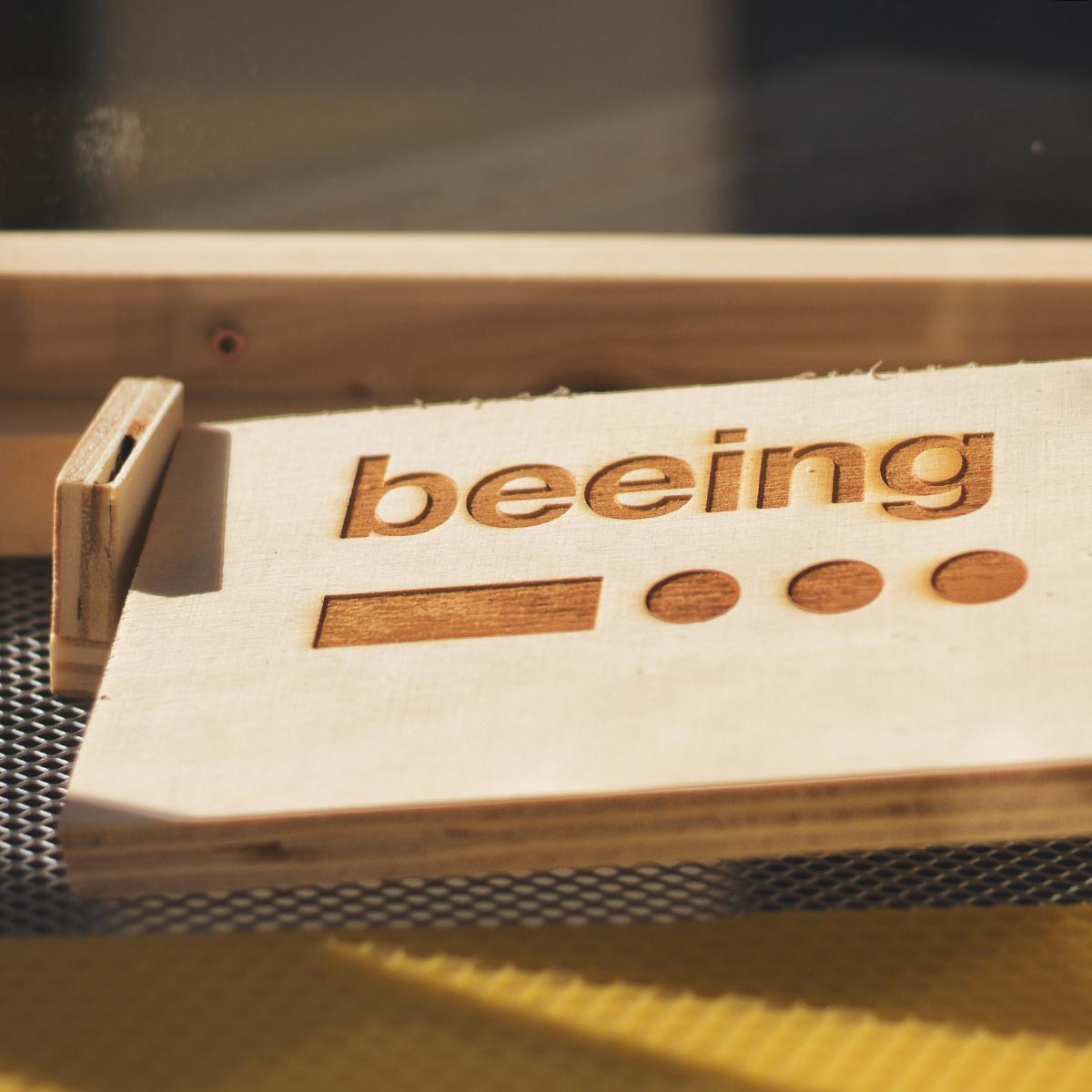Sciame E Formazione Per B-box