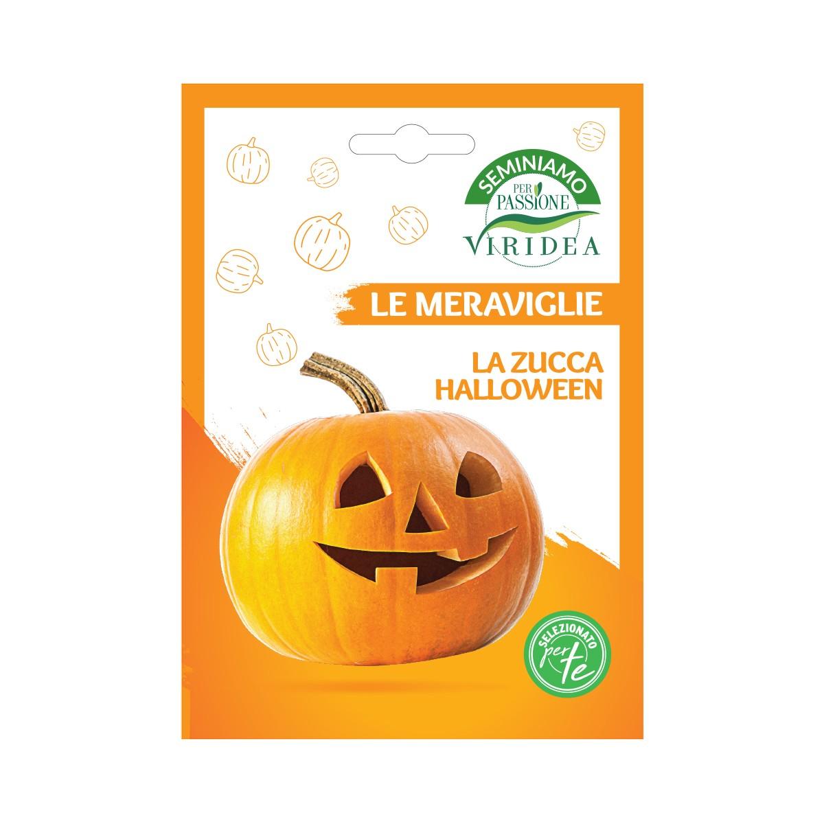 Semi Zucca Halloween Viridea