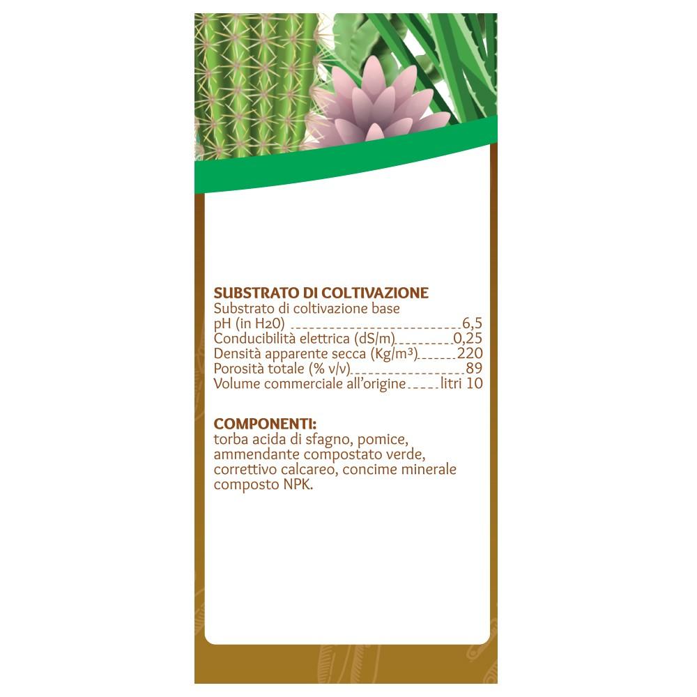 Terriccio Per Piante Grasse E Cactus Viridea 10 Lt