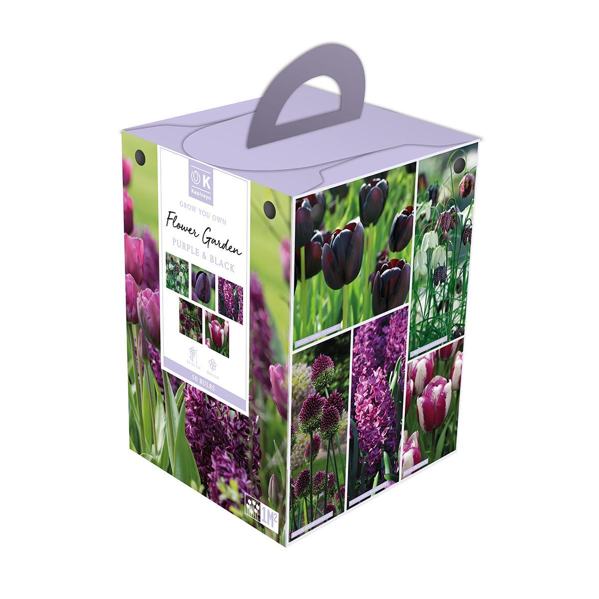Flower Garden Box Purple & Black