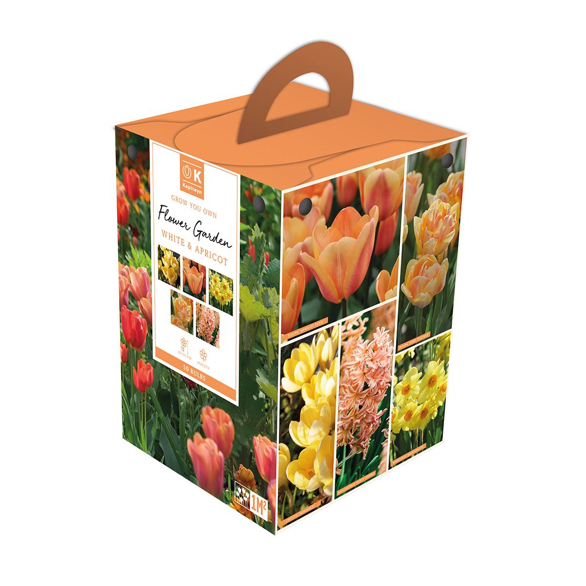 Flower Garden Box Apricot & Yellow
