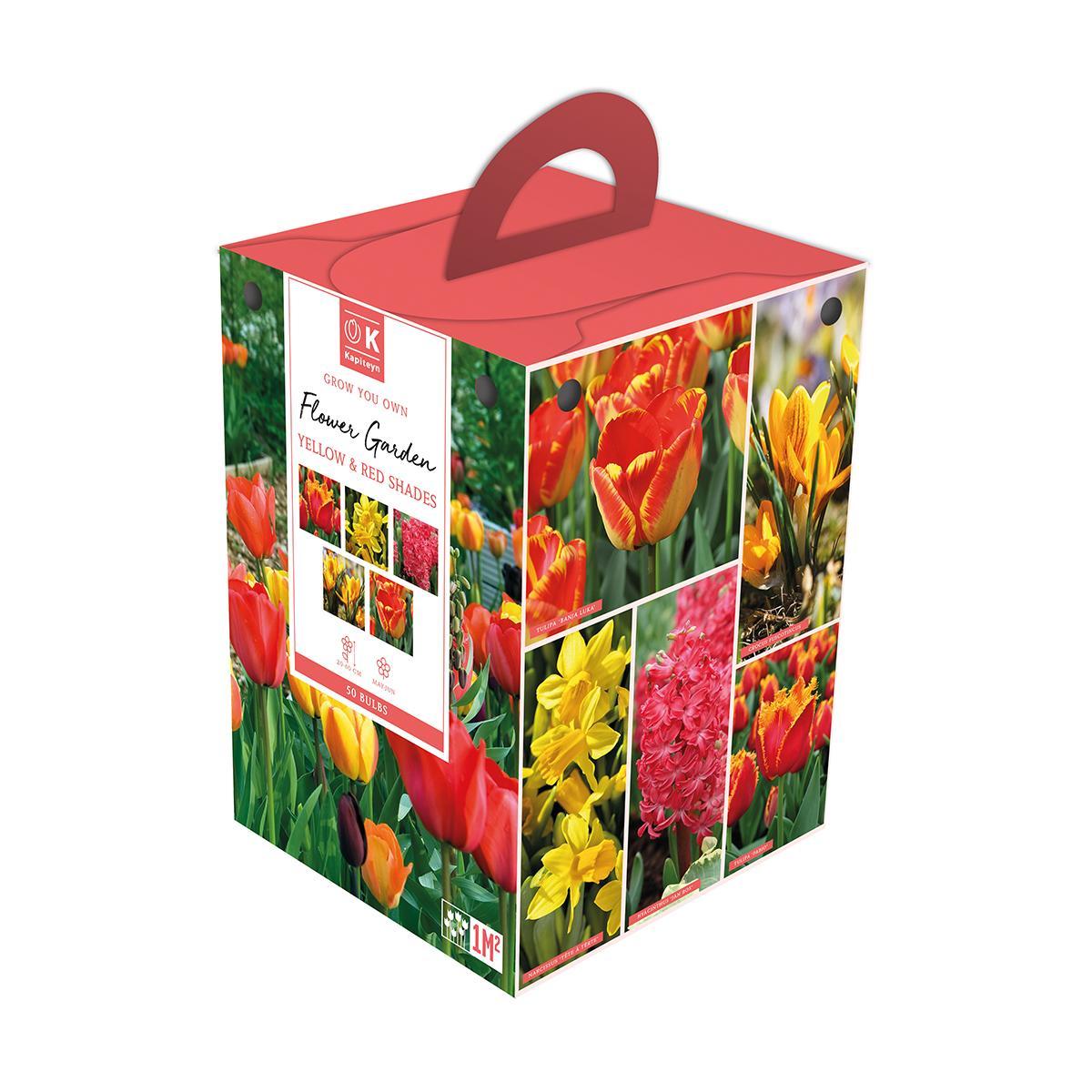 Flower Garden Box Red & Yellow